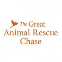 The Great Animal Rescue Chase