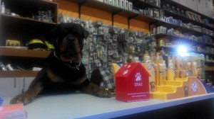 Thank you Fish & Pet Planet (Leof.Ionias 196, Alimos tel.: 2110120189 -190) A  special thanks to  Bruno that will be taking special care of our money box!!!